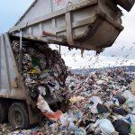 Прокуратура обязала Боровичскую администрацию убрать несанкционированные свалки