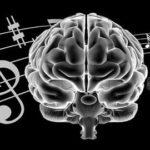 Какое влияние оказывает музыка на человека